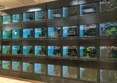 Centrum zoologiczne w Zabrzu (4)